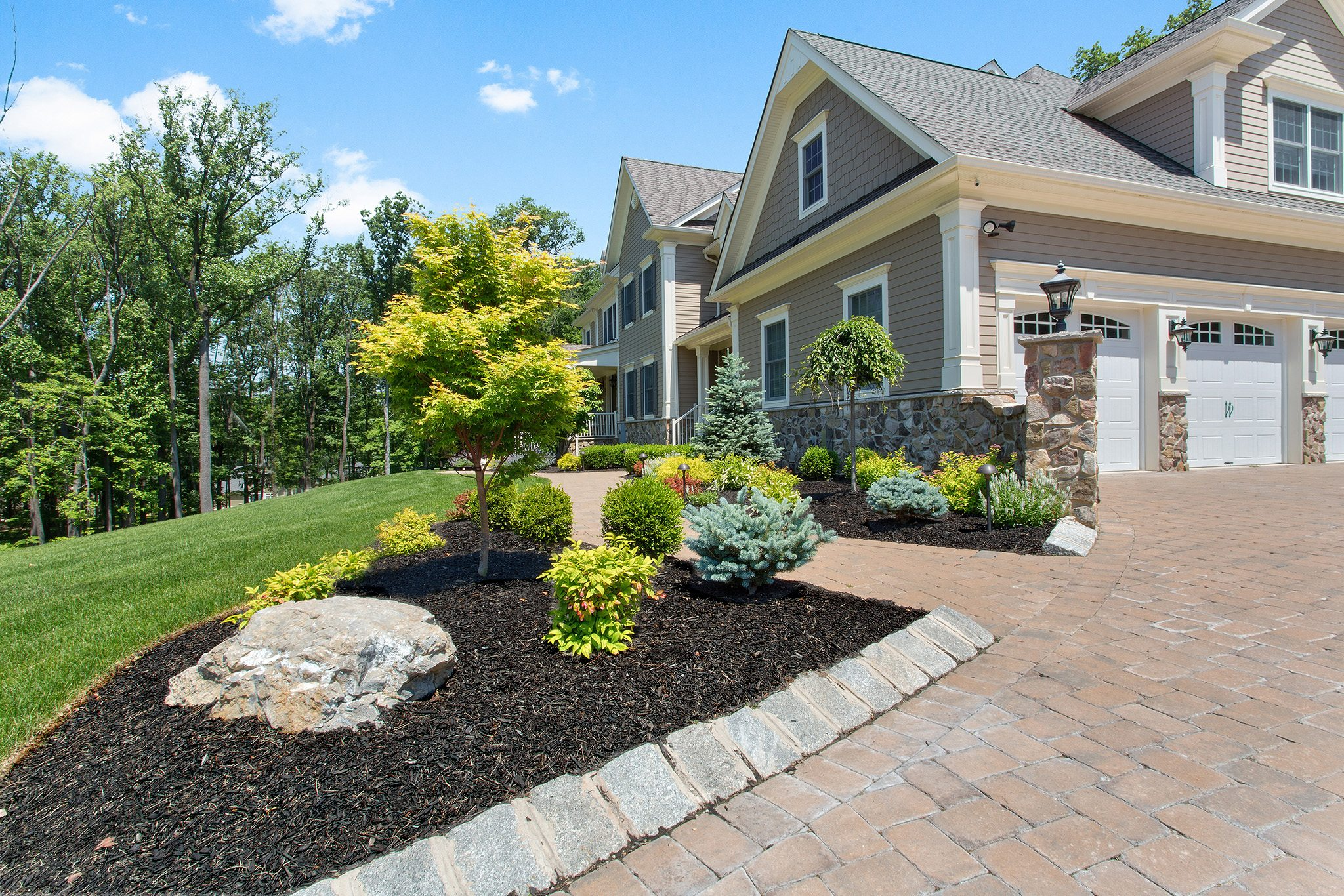 Choosing Plants and Shrubs For Your Home - Tips For Great Home Exteriors
