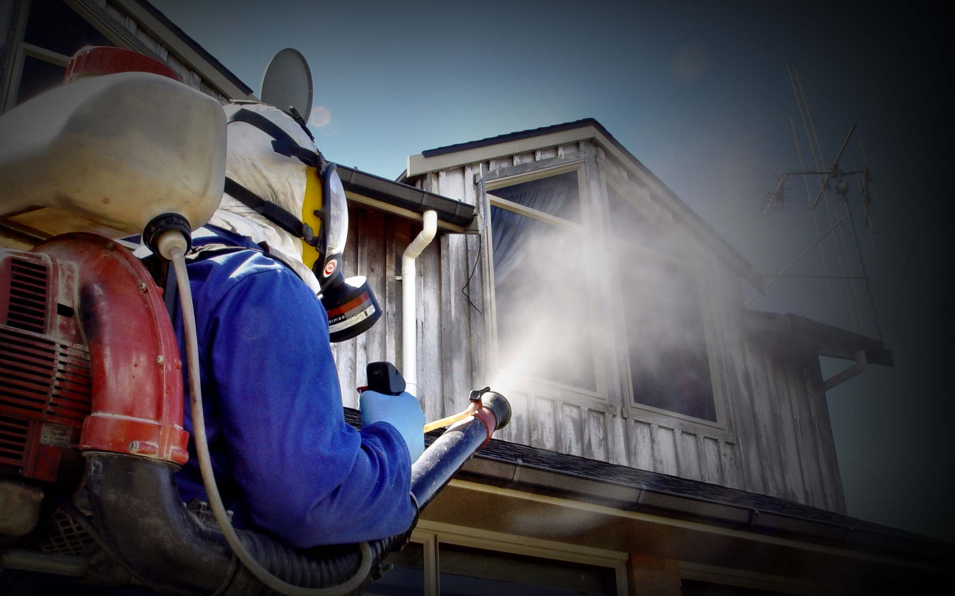 Know How Pest Inspection Sydney Helps