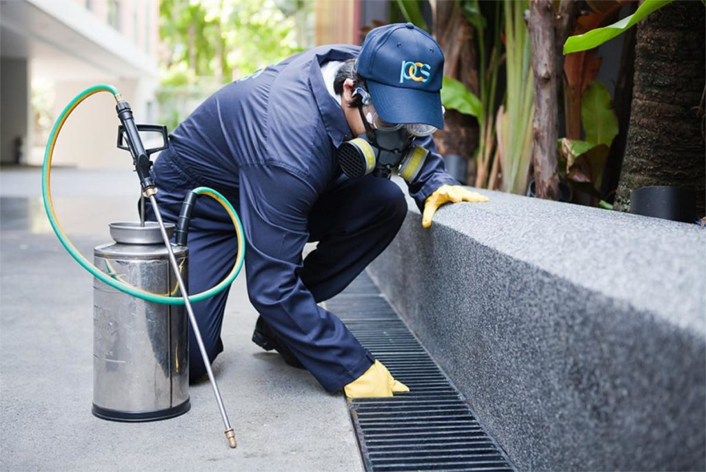Tips to Get The Best Advantages of The Industrial Pest Control Services