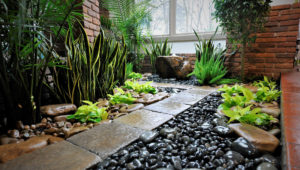 Why a Landscaping Consultation Could Be Right for You